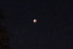 Blood moon receding (digital photo)