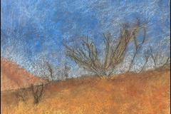 Near Lime Kiln Creek, Sylmar (pastel on paper)