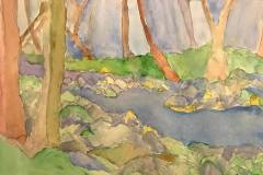 Tenakill Brook (Imaginary View) (watercolor and graphite on paper)